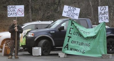 Protests at zoo as big cats are removed