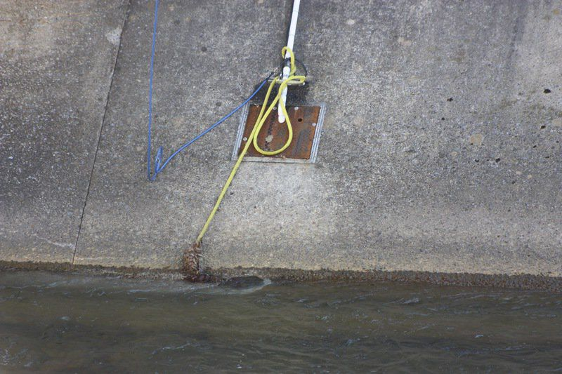 Crews stop Wills Creek sewage leak