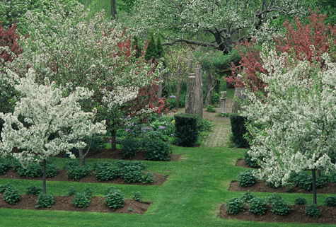 TAC+FIVE_Inevitable garden