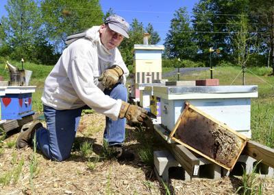 20190607_bta_beekeeper