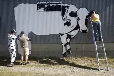 Creating a world cow