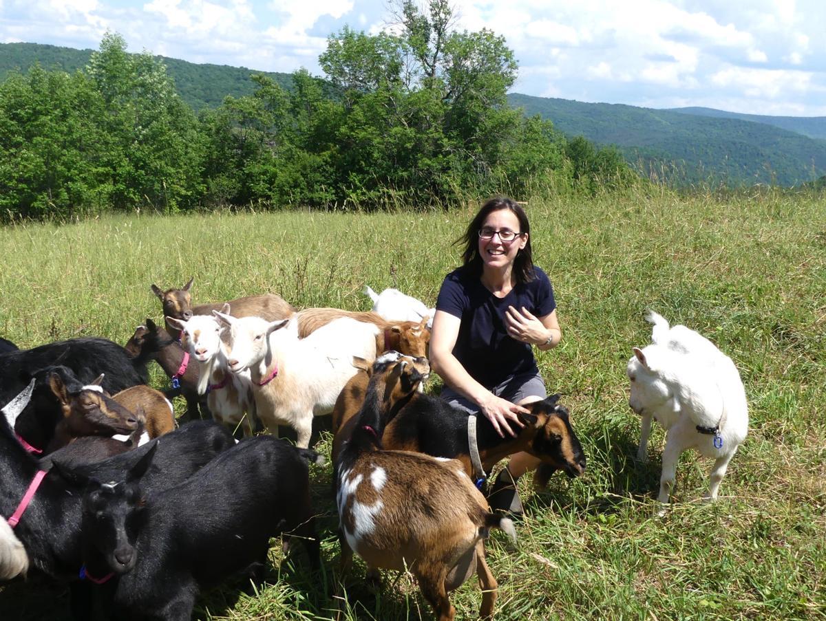 Chelsea creamery introduces goat gelato to New England