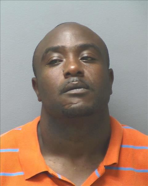 Fifty grams of drugs found in Tuesday bust | Ga Fl News
