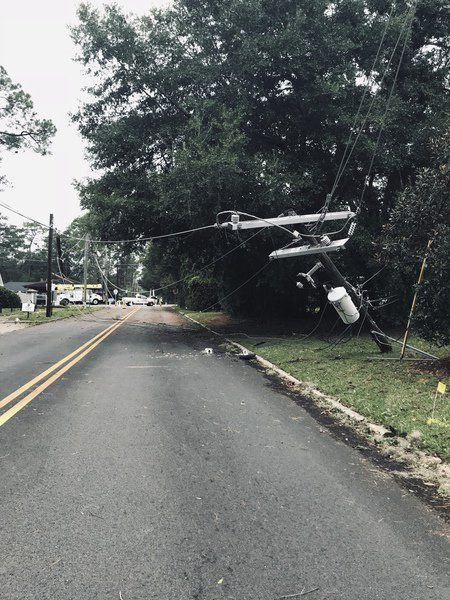 Mighty Michael knocks out power, topples trees
