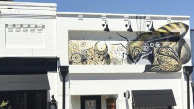 City's murals proposal draws backlash