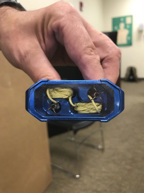 Officers learn firsthand about remote restraint method
