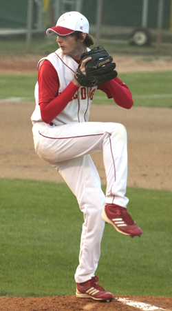 Donalson pitch for web.jpg