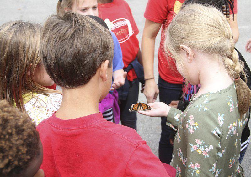Jerger classmates release butterflies