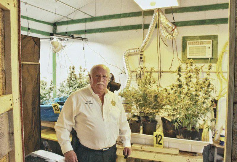 Grady drug unit busts pot-growing operation