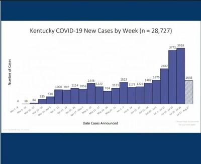 KY COVID-19 bar graph 7/30