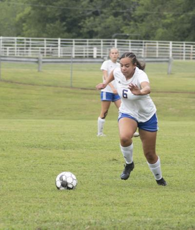 Lady Tigers handle Todd Co. Rebels