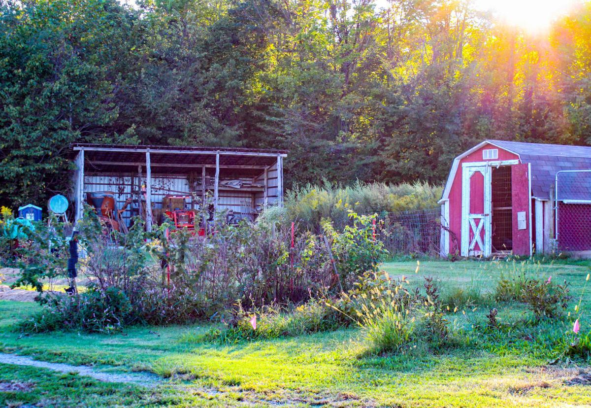 Trimble Farms: a homestead and diversified small farm