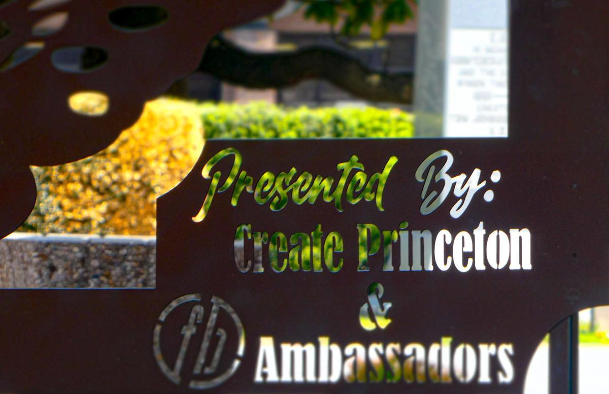 Migrating Princeton transforms downtown
