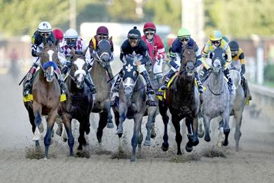 'Game changer': Officials praise horse racing safety bill
