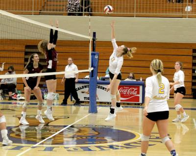 Volleyball splits home matches this week