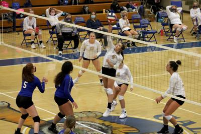 Volleyball shuts out district rival HCC, Fort Campbell