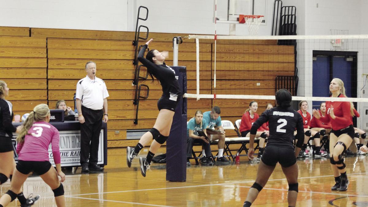 volleyball3_1.jpg