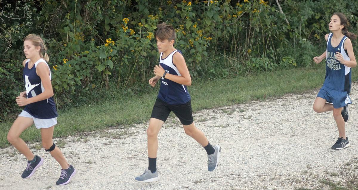 Lovins, Martin are top Appomattox runners at Dogwood cross country meet