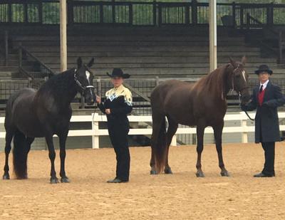 Appomattox 4-H Horse & Pony Club members