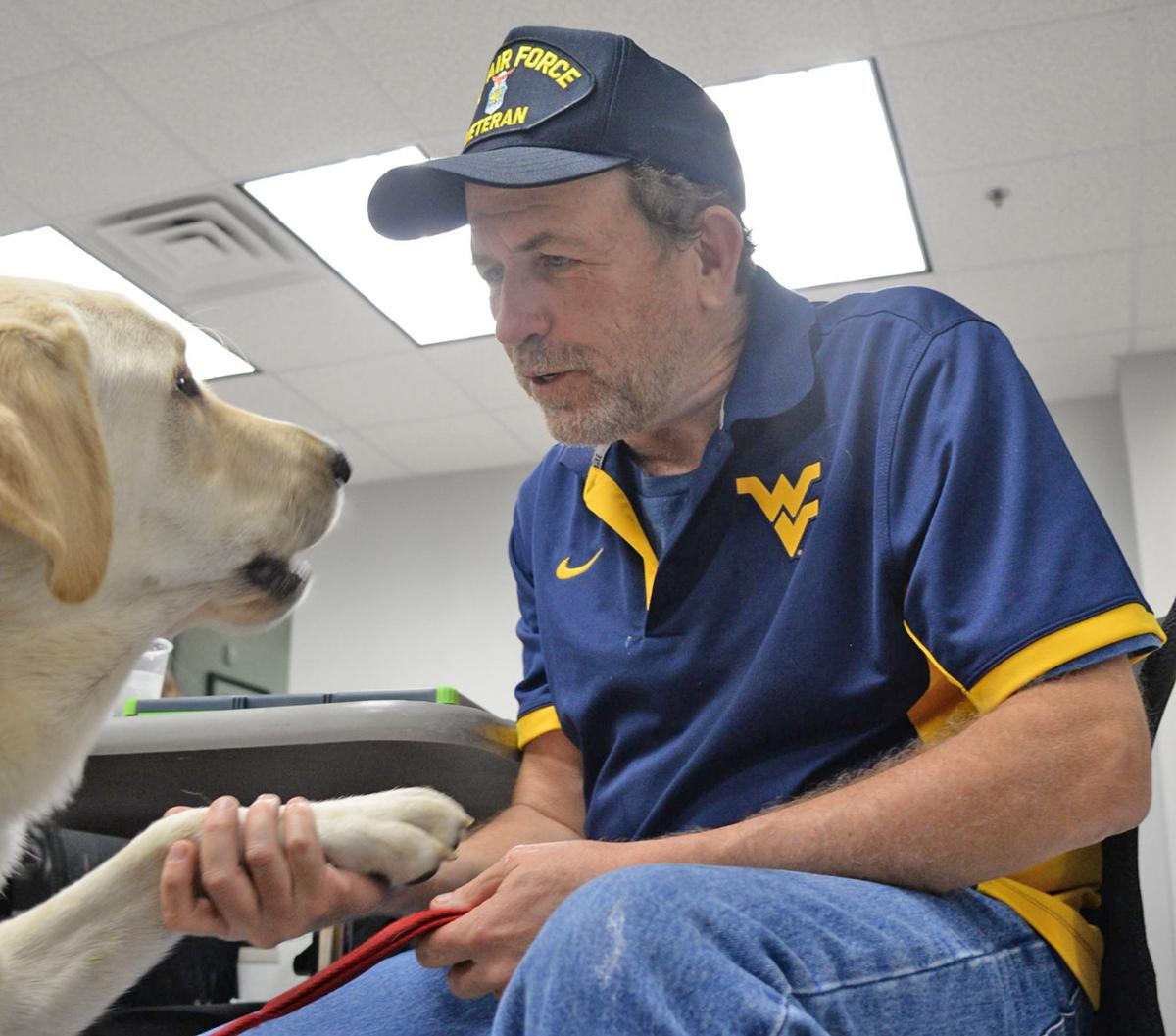 Service dogs provide needed 'help now' for veterans: Photos