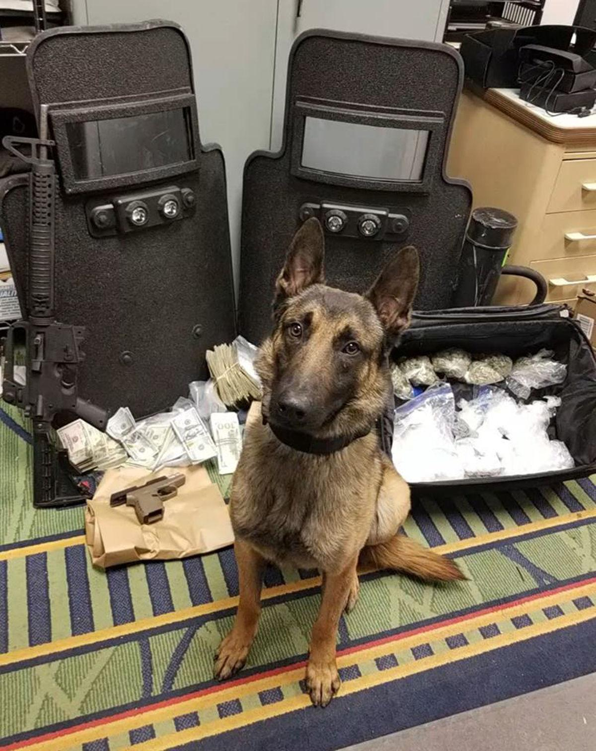 Nearly 2,000 grams of meth, other drugs seized in Fairmont drug bust