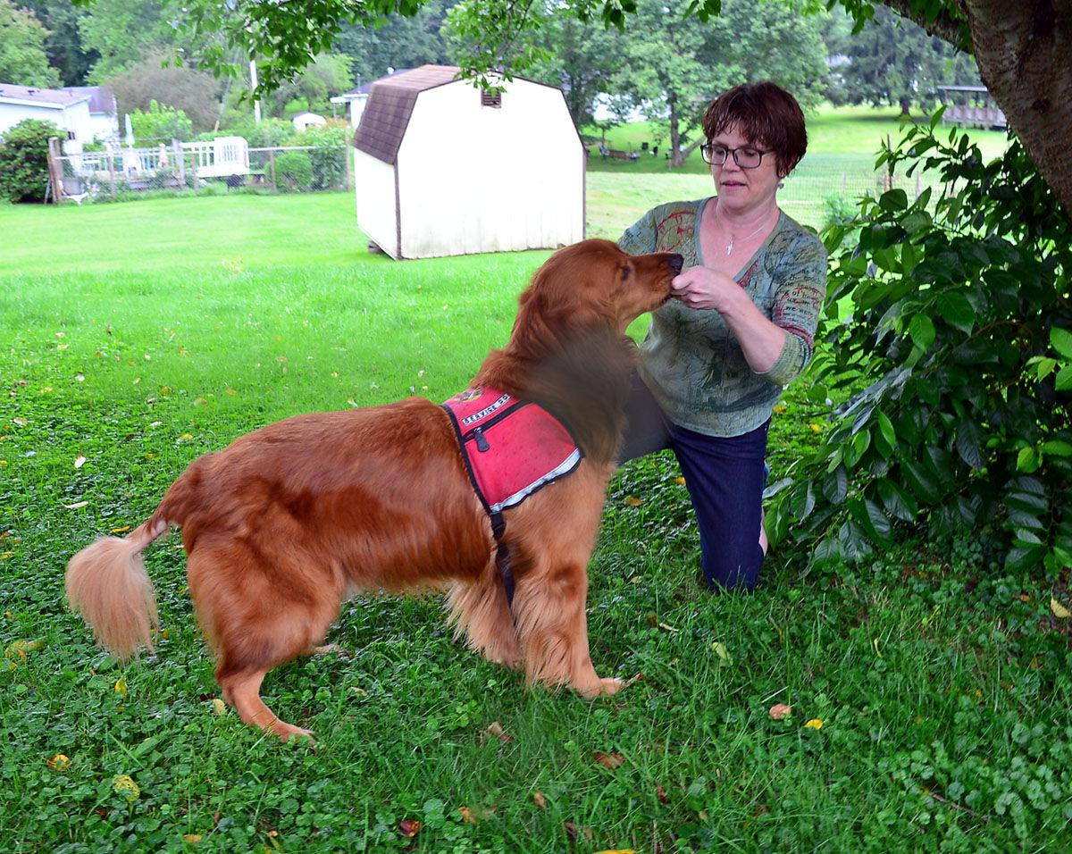 What Is A Legal Service Dog In Wv