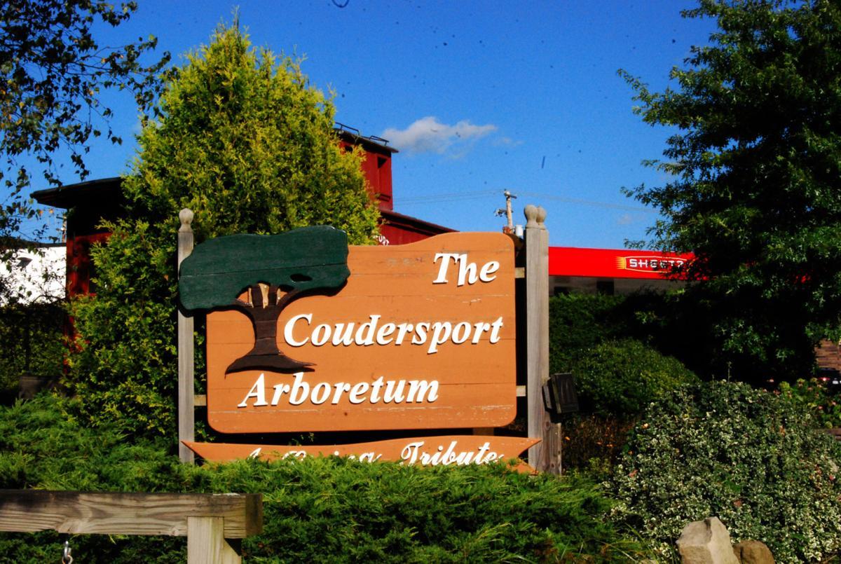 Superb Coudersport Borough Council Talks Budget Arboretum Medical Download Free Architecture Designs Rallybritishbridgeorg