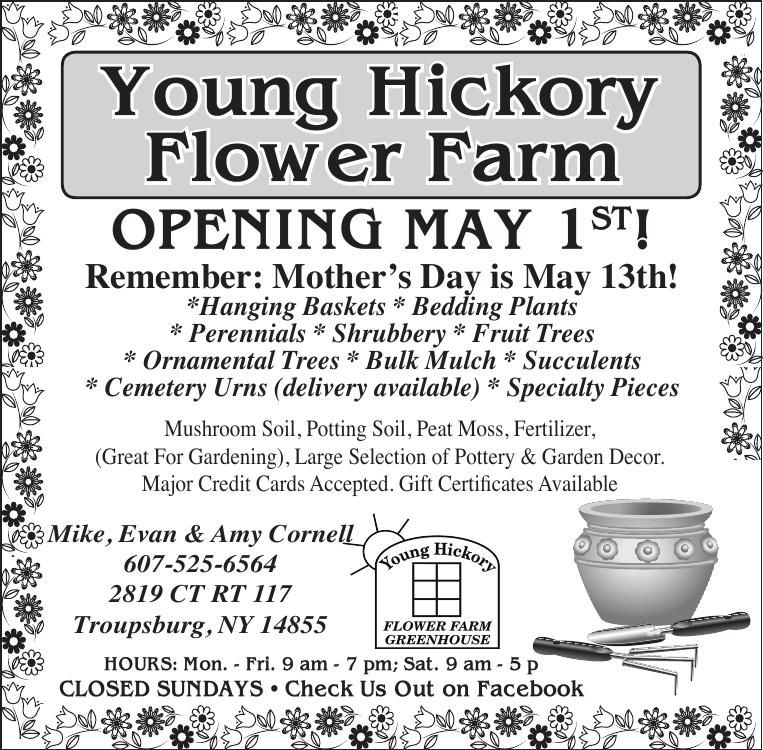Younghickorynowopen42618pdf free press courier download pdf younghickorynowopen42618pdf mightylinksfo