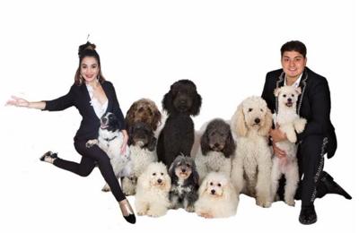 The Olate Dogs