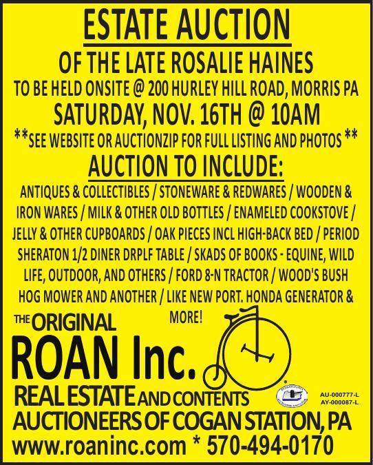 Roan Inc Haines Estater 2x4.5 ROP Color _ 11-7-19.pdf