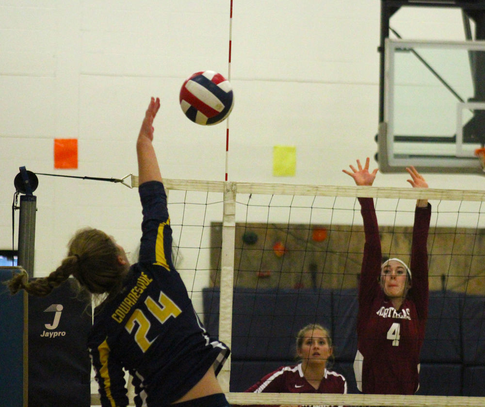 Vargeson rises above net