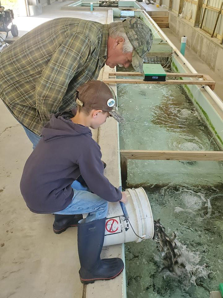 CV Anglers prepare nursery for trout fingerlings
