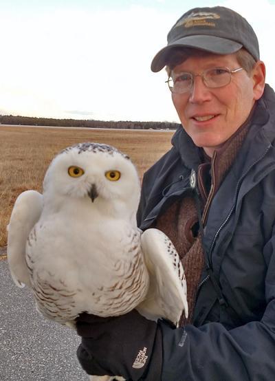 Snowy owl presentation is Jan. 12