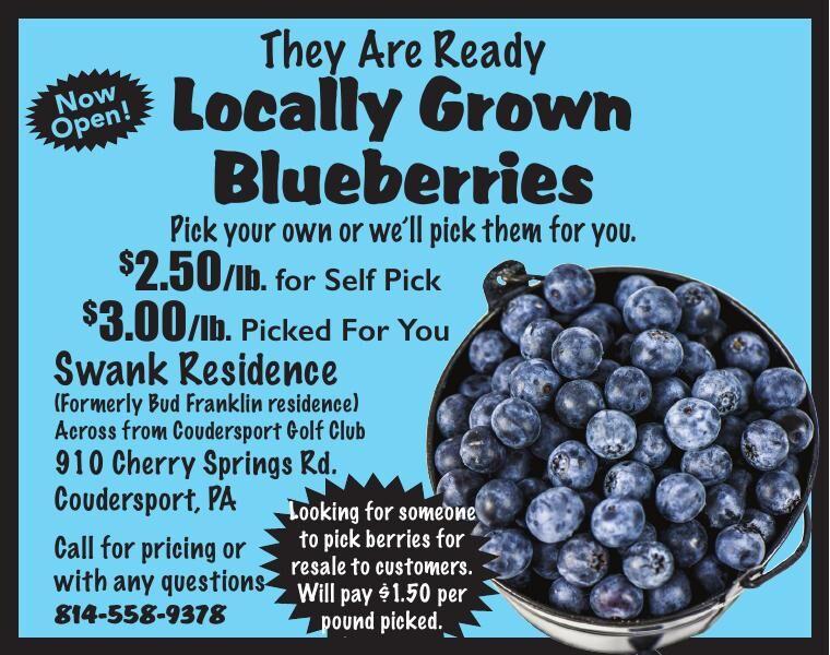 ShopNsaveBlueberries 7.30.20.pdf