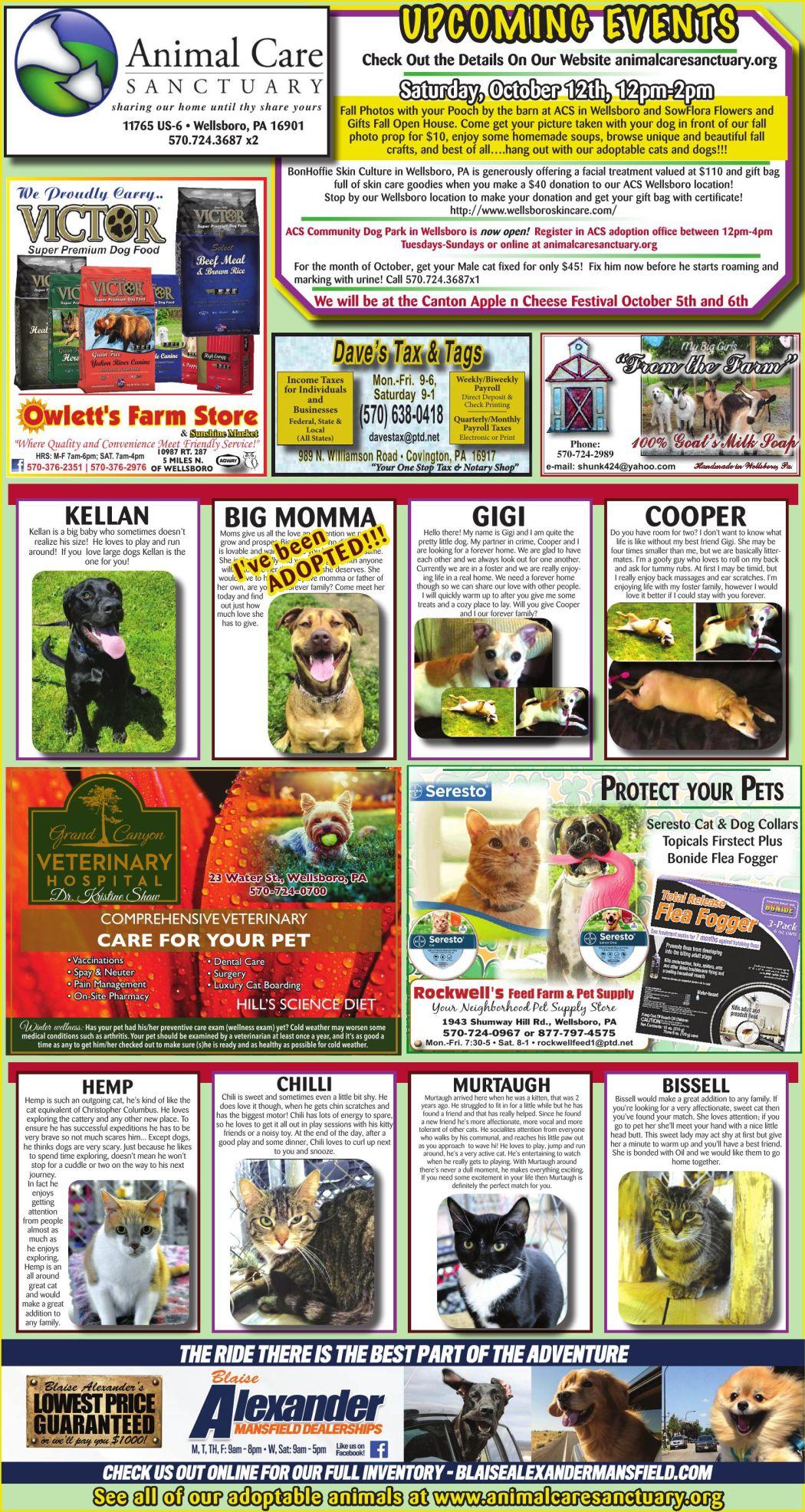 Pet Page 10-3-19.pdf