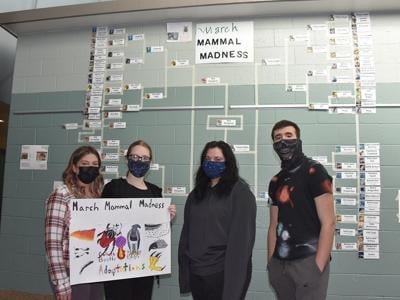 Students compete in March Mammal Madness
