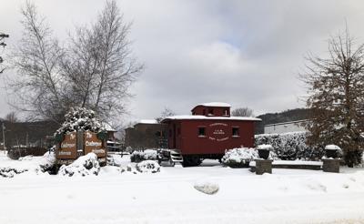 arboretum snow.jpg