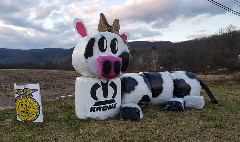 FFA builds hay bale cow for contest entry
