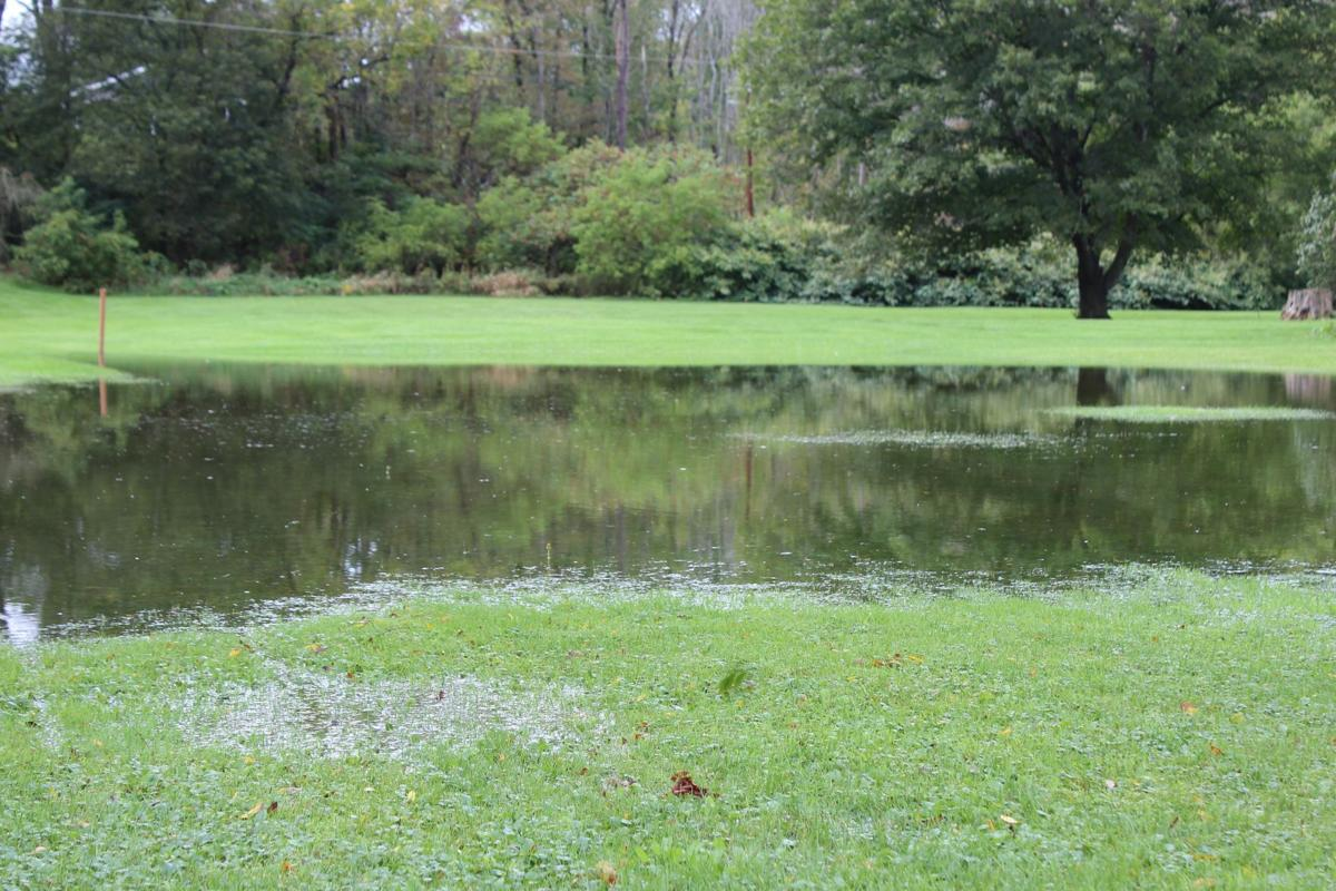 The backyard of 139 Nichols Street after heavy rain