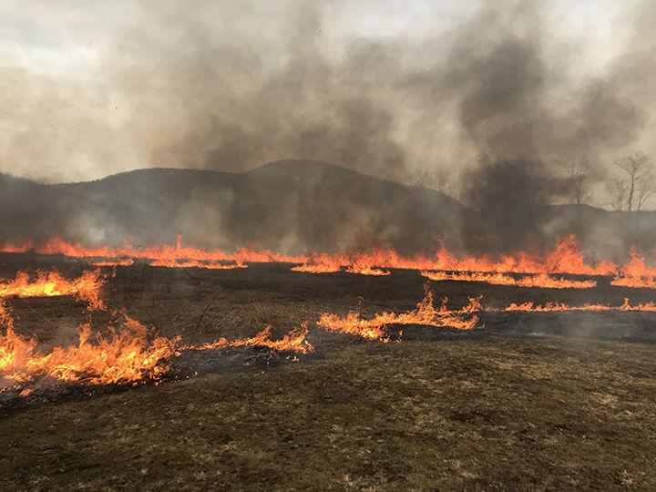 Marsh Creek controlled burn