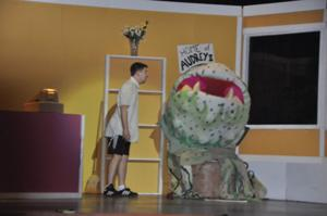 'Little Shop of Horrors' opening night to be held July 6