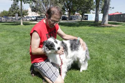 Non-profit rescues blind dogs