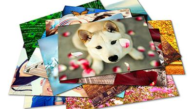 Offer new metal prints and additional professional print sizes through BLOX Photo Sales