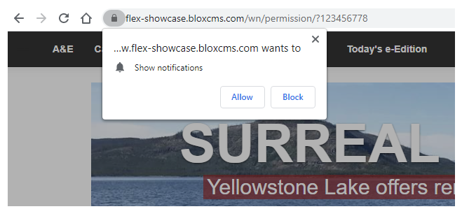 Browser permissions