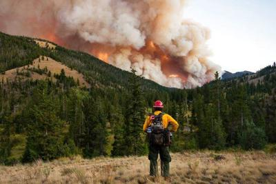 Wildfire east of Yellowstone slows following evacuations