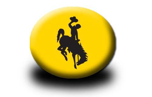 Wyoming Button