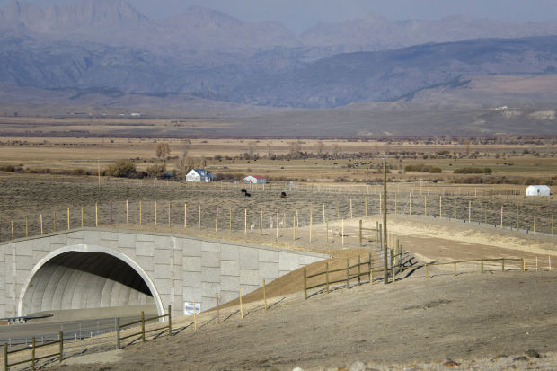 Antelope Overpass