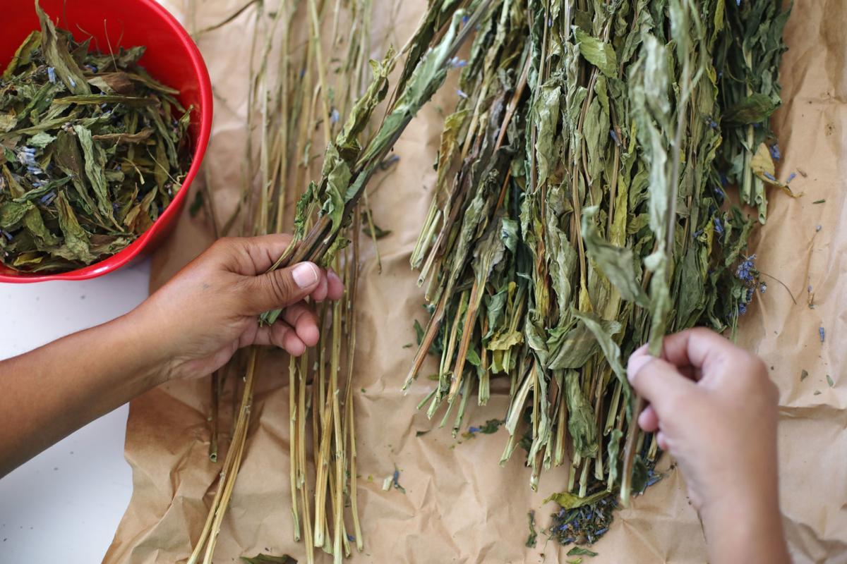Shoshone Traditional Food