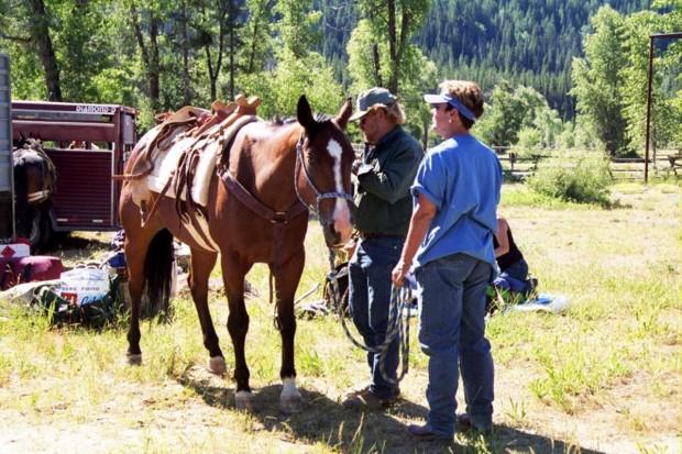 Horse Shot