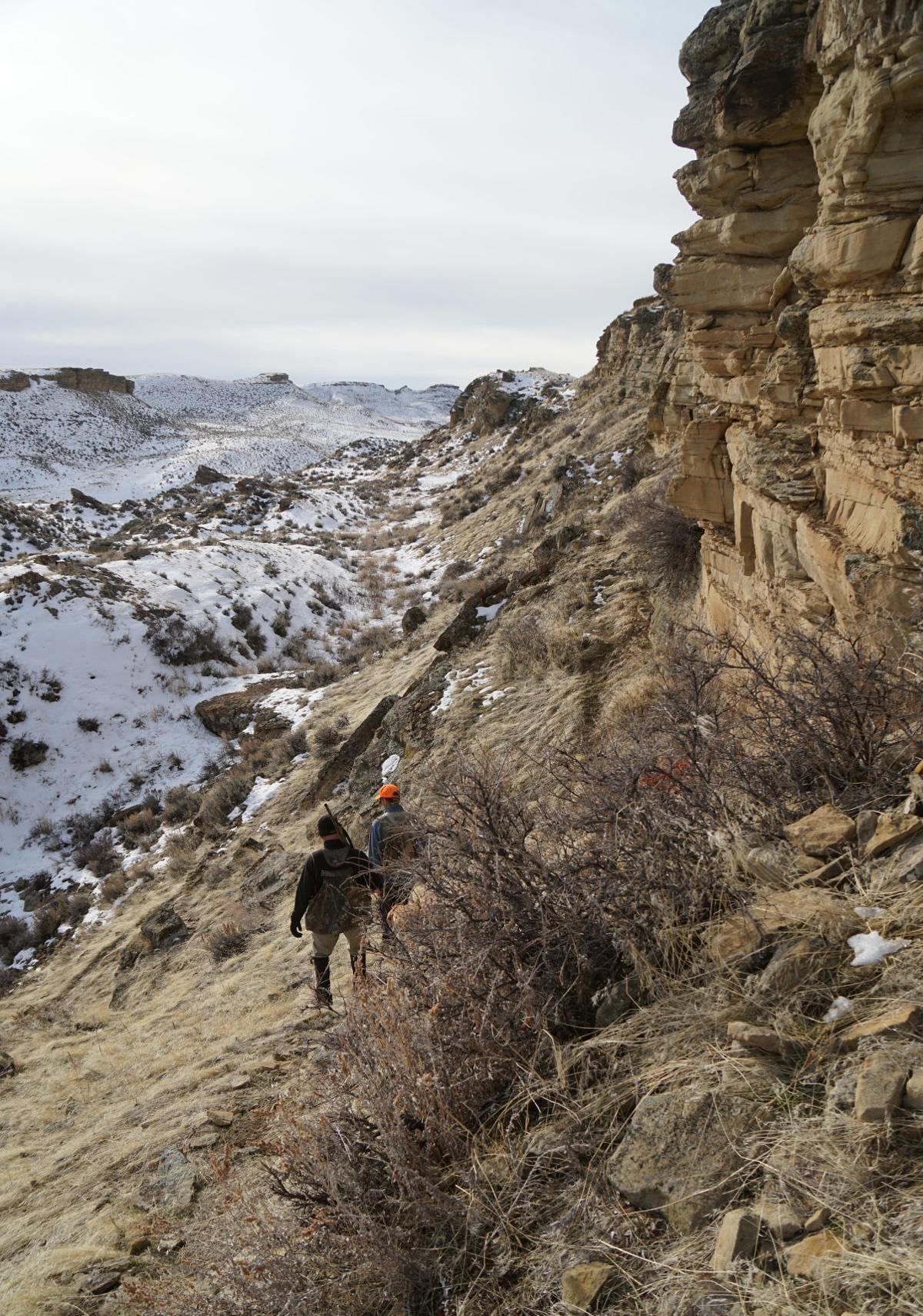 Chukar Hunting